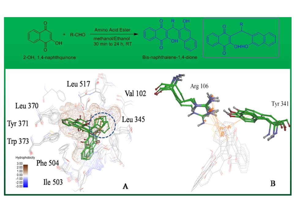 Synthetic Impatienol analogues as potential cyclooxygenase-2 inhibitors: a preliminary study